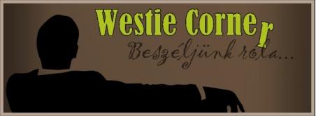 A fórum, ahol bármilyen infót megkaphatsz, amire szükséged van a kezdő west coast swing tanfolyam után